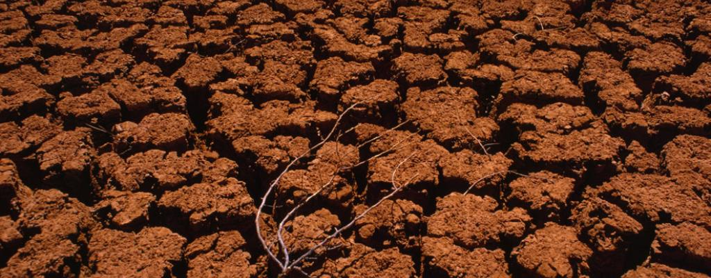 Image of Dig into the secrets of soil erosion