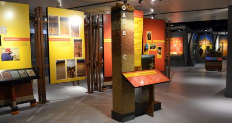 "The national traveling exhibit ""Dig It! The Secrets of Soil"" is open at the California Museum through March 29, 2015.  ©2014 The California Museum. All rights reserved."