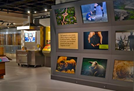 "Interactive displays and games from ""Dig It! The Secrets of Soil."" ©2014 The California Museum. All rights reserved."