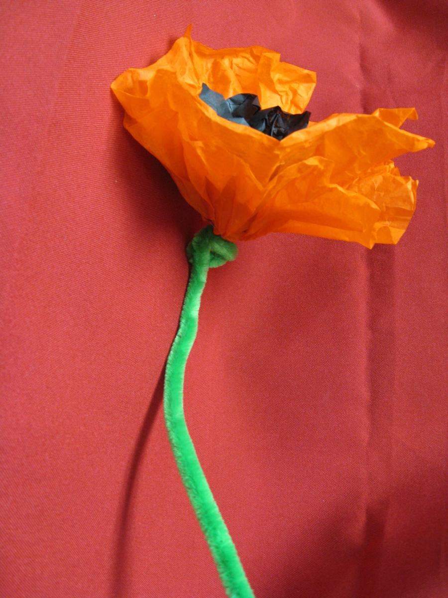 Tissue paper poppy california museum tissue paper poppy recreate the states iconic flower mightylinksfo