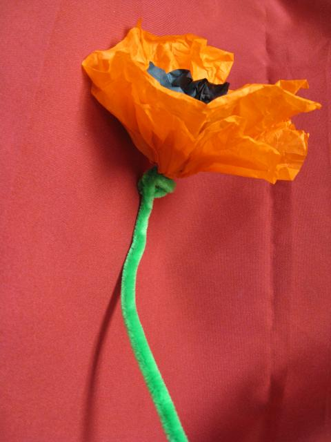 Image of Tissue Paper Poppy