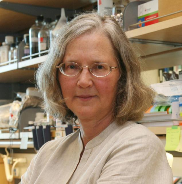 Image of Elizabeth Blackburn