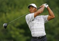 Image of Tiger Woods